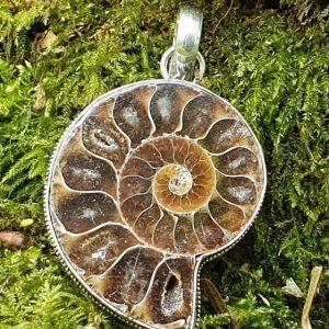 Ammonite fossilisée ou opalisée plaqué argent