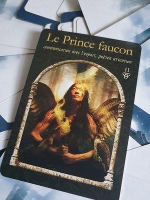 Le prince faucon, carte de l'oracle de la sagesse des royaumes cachés, de Colette Baron-Reid